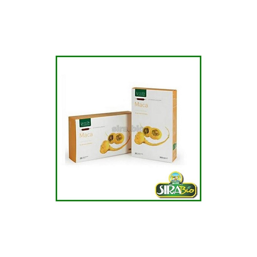 Maca - 20 ampolle
